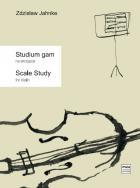 Studium gam